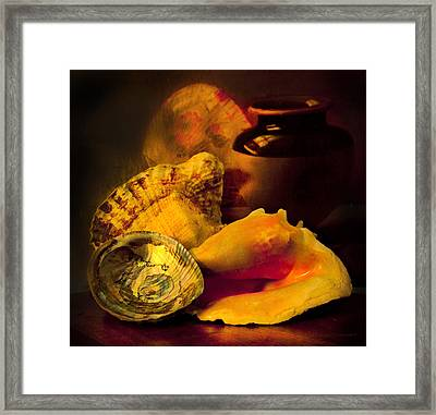 Still Life With Shells Framed Print