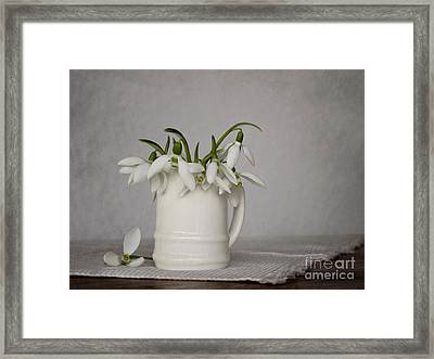 Still Life With Snowdrops Framed Print by Diana Kraleva