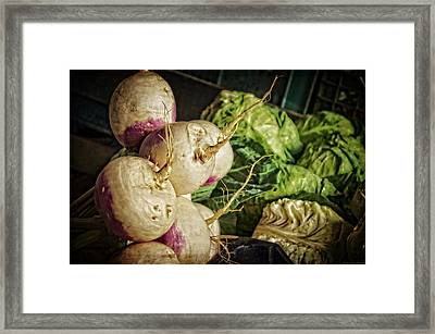 Still Life With Turnips Framed Print by Mary Machare