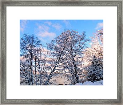 Still Of Winter Framed Print
