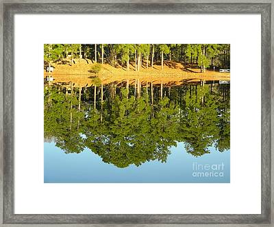 Still Reflections Framed Print