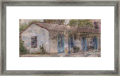 Still Standing Framed Print by Barbara R MacPhail
