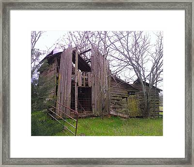 Framed Print featuring the photograph Still Standing by Lew Davis