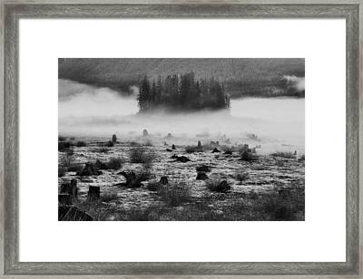 Still Standing Framed Print by Mark Kiver