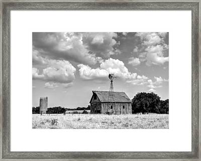Still Standing Proud Framed Print