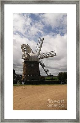 Still Turning In The Wind Framed Print by Tracey Williams