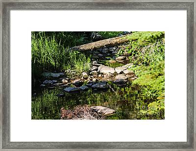 Still Waters 1 Framed Print
