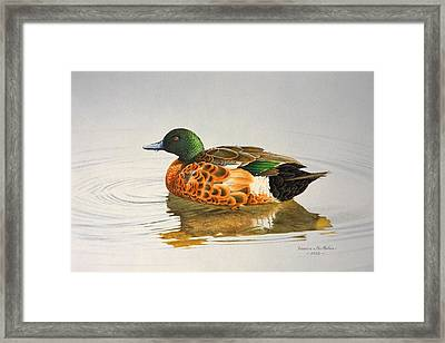 Still Waters - Chestnut Teal Framed Print