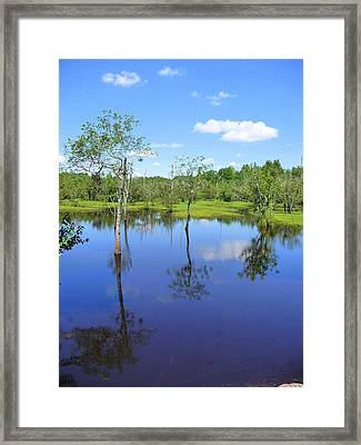 Framed Print featuring the photograph Still Waters by Jim Whalen