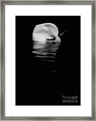 Still Waters Run Deep Framed Print by Julian Cook