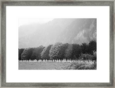 Framed Print featuring the photograph Stillness And Motion by Sandi Mikuse