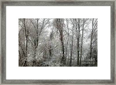Stillness In Black And White Framed Print