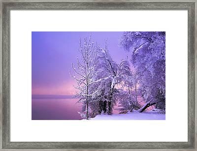Stillness Framed Print by Norbert Maier