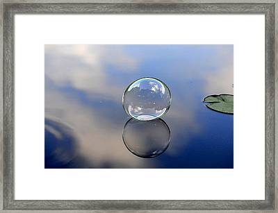 Stillness Of Water Framed Print by Terry Cosgrave