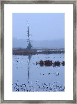 Stillness On The Flowage Framed Print