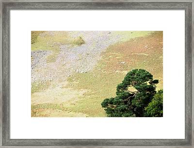 Stillness. Wicklow Mountains. Ireland Framed Print by Jenny Rainbow