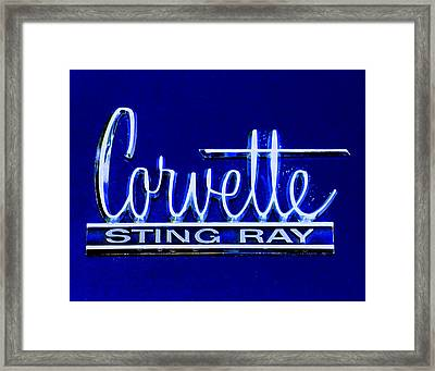 Sting Ray 001 Framed Print