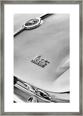 Sting Ray Monochrome Framed Print by Tim Gainey