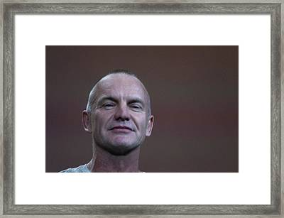 Sting With A Confident Bit Of Attitude Framed Print by Scott Lenhart