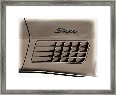 Stingray Detail Framed Print