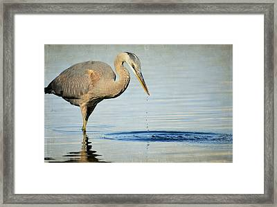 Stirring The Water 2 Framed Print