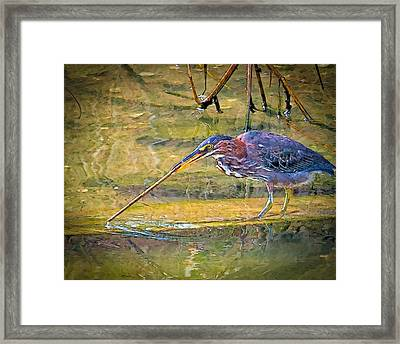 Stirring The Waters Framed Print