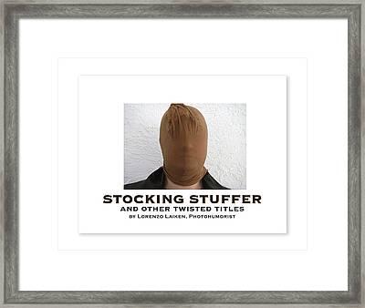 Stocking Stuffer Book Cover Framed Print