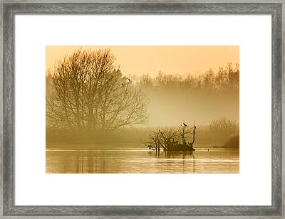 Stodmarsh Framed Print by Ian Hufton