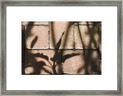 Stone And Light 10 Framed Print