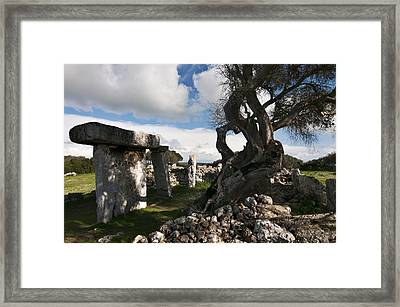 Talayotic Culture In Minorca Island - Stone And Wood Under A Blue Sky Framed Print