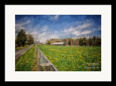 Wooden Fence Framed Prints