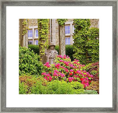 Stone Cold In Belgium Framed Print