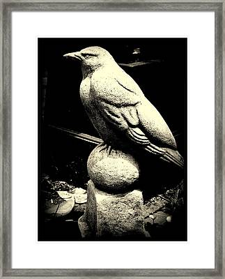 Stone Crow On Stone Ball Framed Print