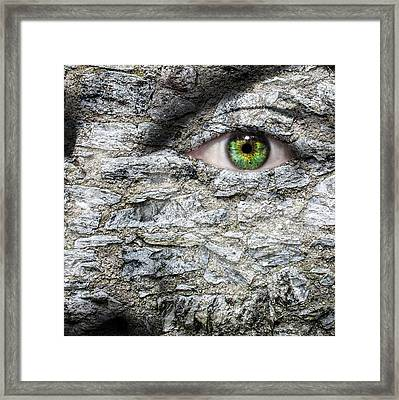 Stone Face Framed Print by Semmick Photo