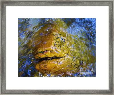 Stone Fish Framed Print