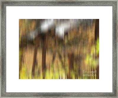 Stone Footbridge Framed Print