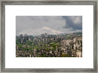 Stone Forest 2 Framed Print by Robert Hebert