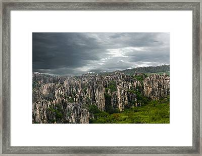 Stone Forest Framed Print by Robert Hebert