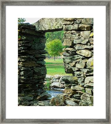 Stone Framed Tree Framed Print by Heather Sylvia