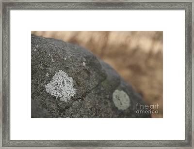 Stone Framed Print by Graham Foulkes