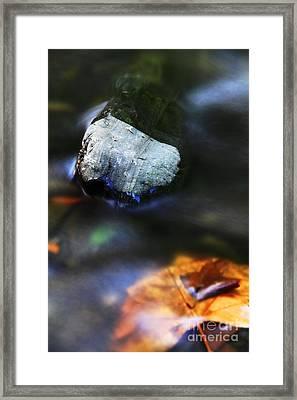 Framed Print featuring the photograph Stone by Mariusz Czajkowski