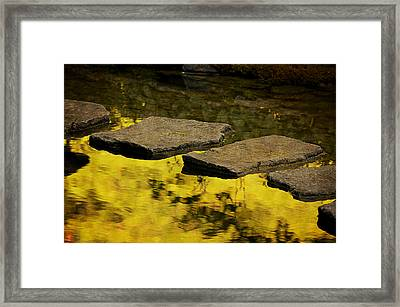 Stone Path Framed Print by Maria Angelica Maira