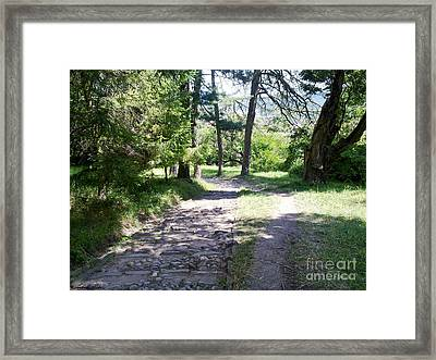 Framed Print featuring the photograph Stone Path by Ramona Matei