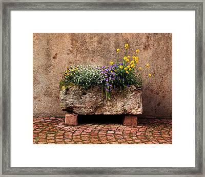 Stone Planter In Kaysersberg France Framed Print by Greg Matchick