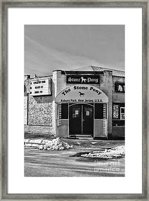 Stone Pony In Black And White Framed Print by Paul Ward