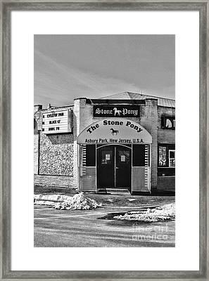 Stone Pony In Black And White Framed Print