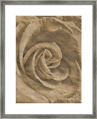 Stone Rose Framed Print by Jose Elias - Sofia Pereira