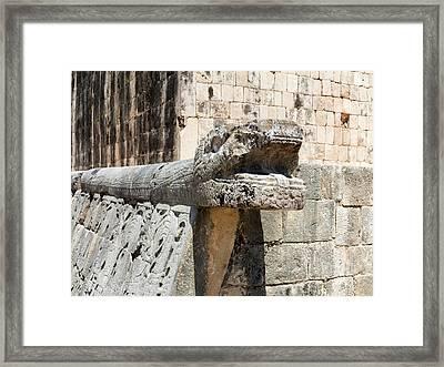 Stone Snake Framed Print