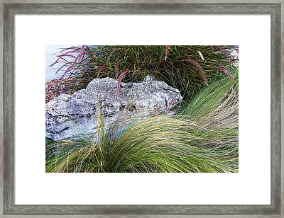 Stones With Flowing Grass Framed Print by Linda Phelps