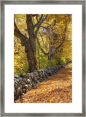 Stonewall In Autumn Framed Print by Donna Doherty